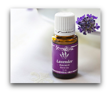 young living lavender essential oil lip balm