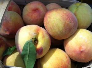 peach cobber recipe