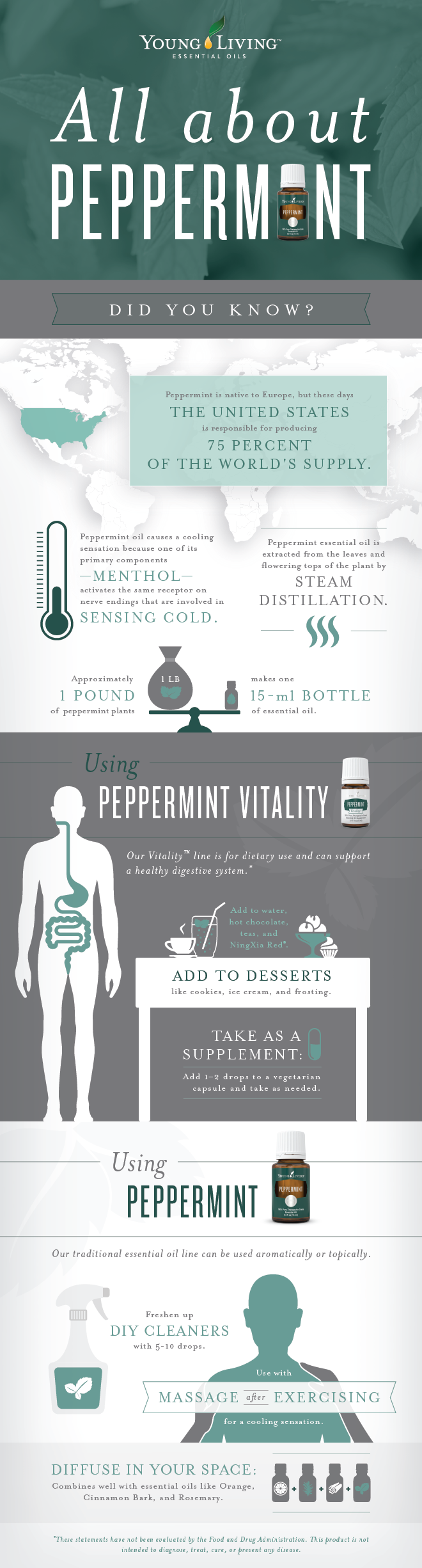 All about YL Peppermint Oil